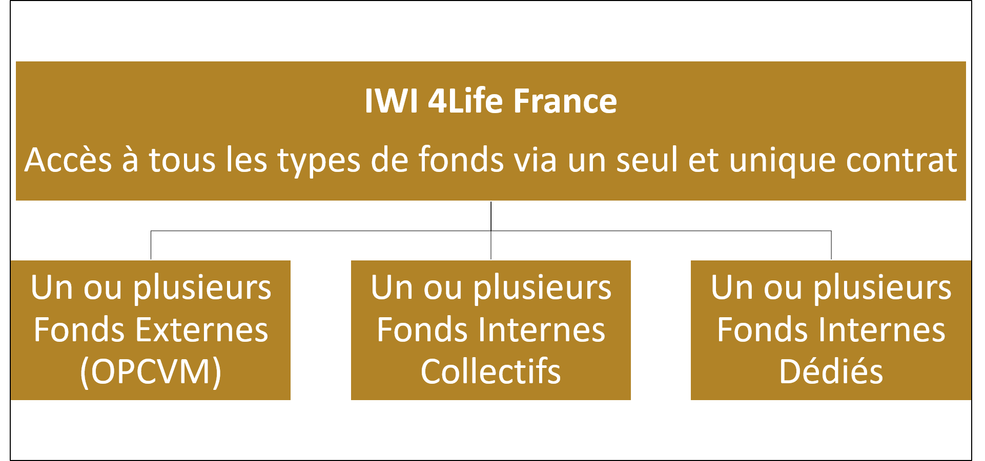 IWI 4Life France - All-in-One