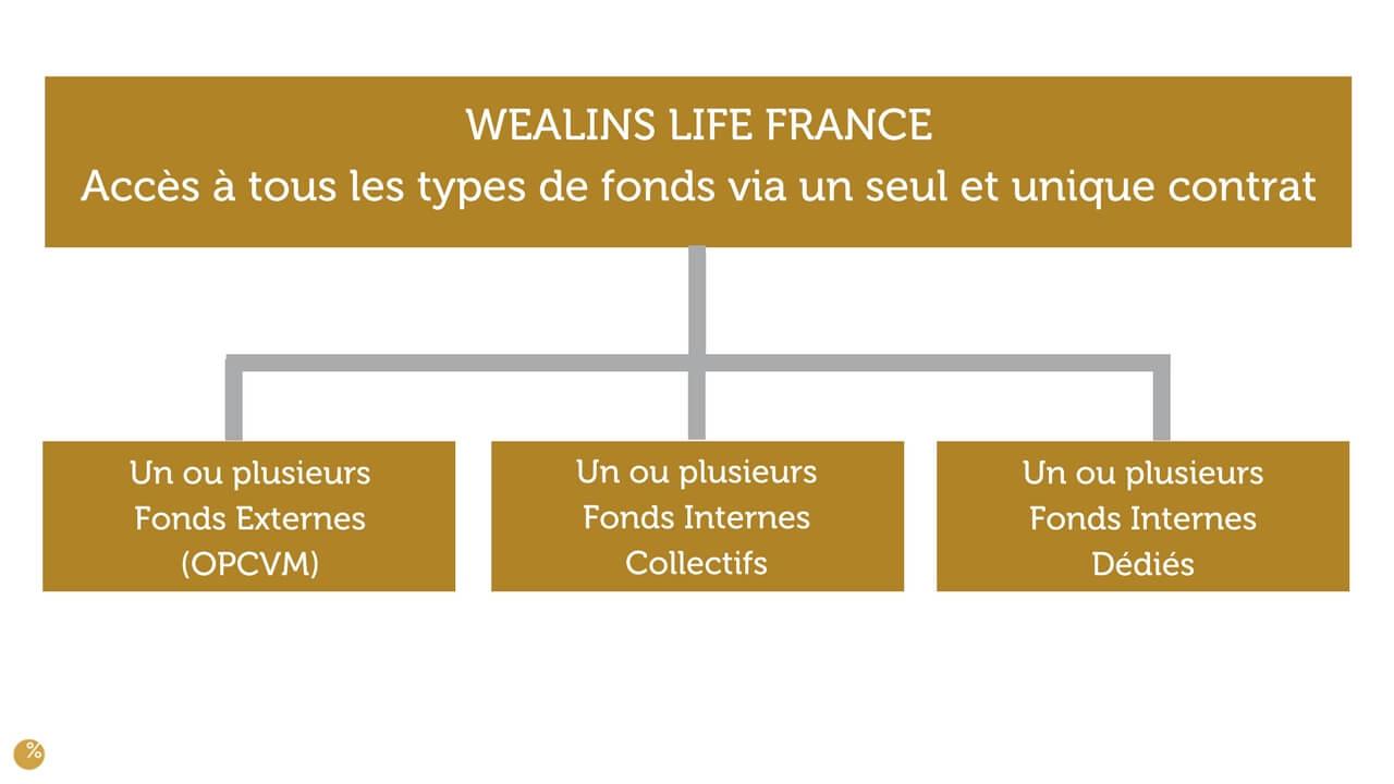 WEALINS LIFE FRANCE