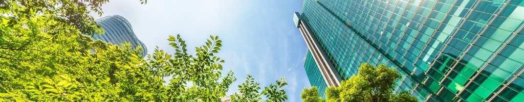 Comment investir dans « l'économie verte » en 2021